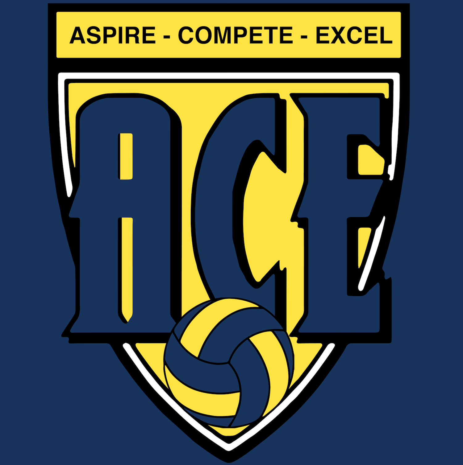 ACE  Volleyball  Academy (AVA)